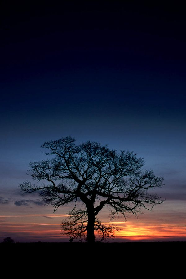 buckinghamshire-autumn-sunset-cathal-gantly
