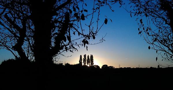 sunset-silhouette-malcolm-stewart
