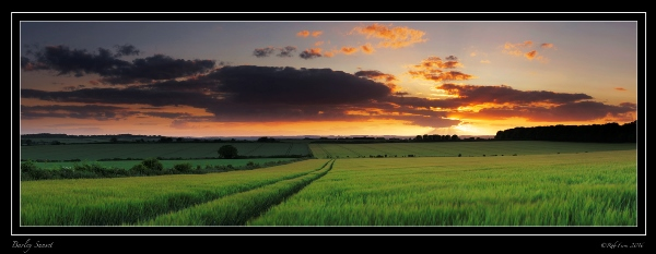 2b-barley-sunset-rob-ferns